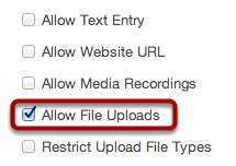 Allow File Uploads