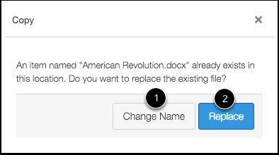 Replace Duplicate File