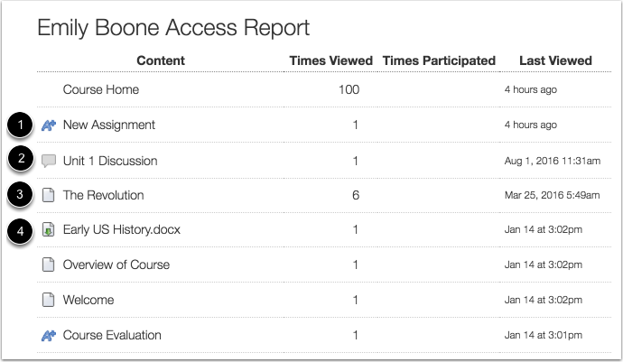 View Access Report Icons