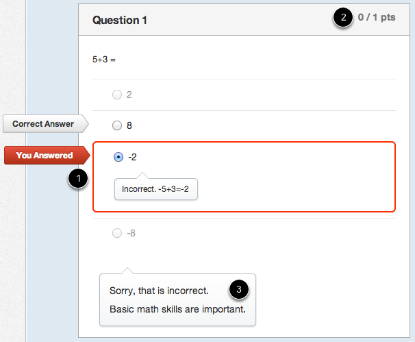 Student View of Multiple Choice Incorrect Answer