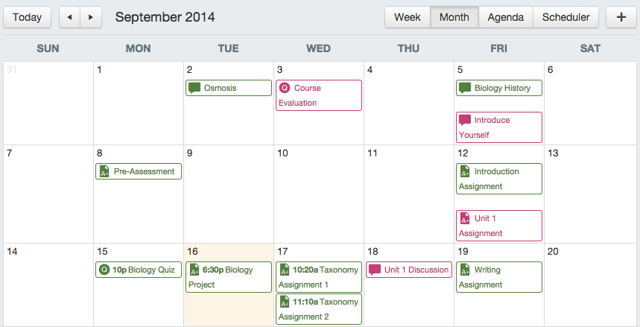 Observers Can See the Calendar