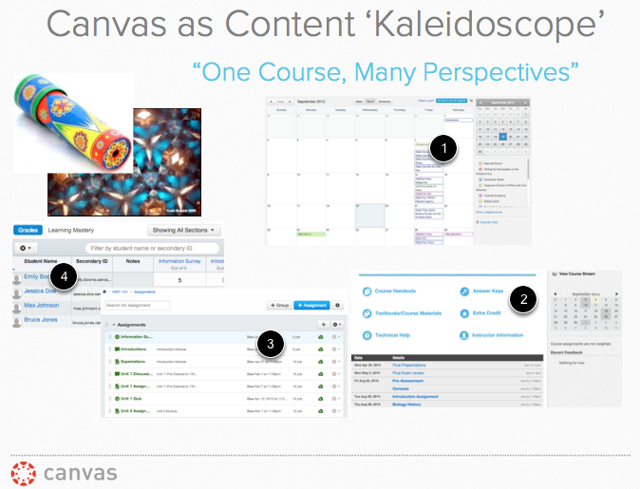 """""""One course, many perspectives"""": Canvas as Content Kaleidoscope"""