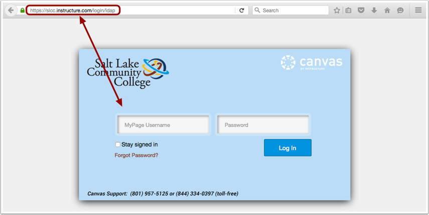 Access Canvas via Canvas URL