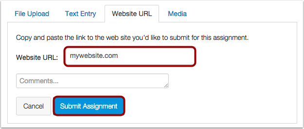Submit Website URL