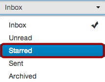 View Starred Messages
