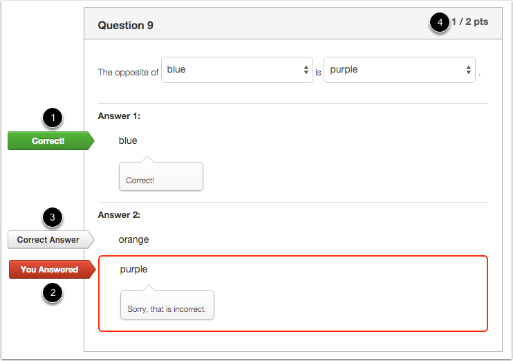 Student View for Multiple Dropdowns Feedback