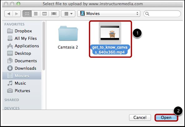 Open Video File
