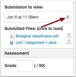 View Assignments in SpeedGrader™