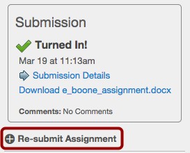 Student View for Resubmit Assignment