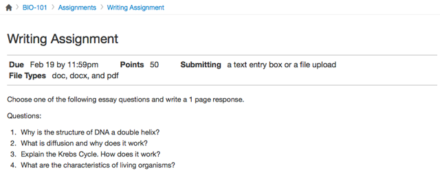 View Assignment Instructions