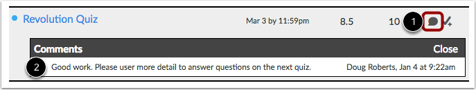 View Assignment Comments
