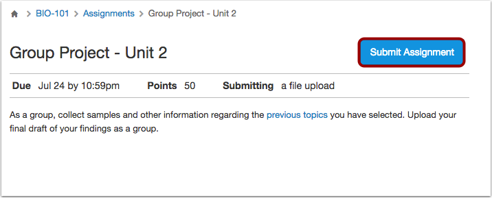 View Group Assignment