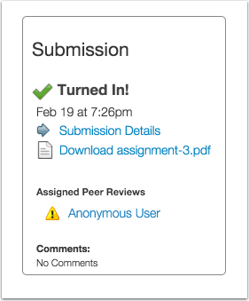 Open Anonymous Peer Reviews