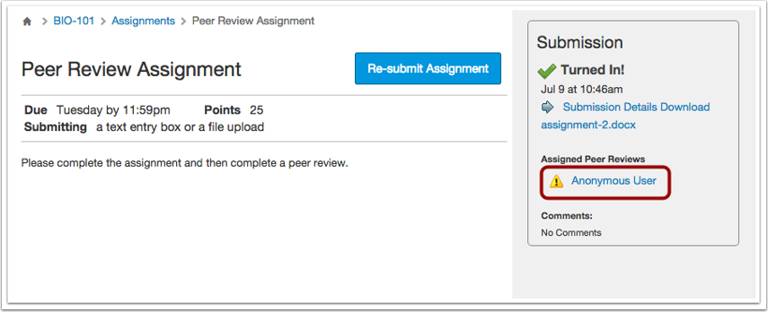 Viewing Anonymous Peer Reviews