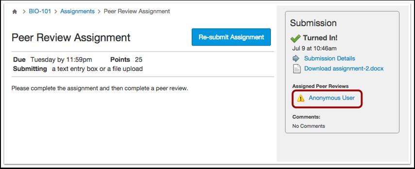 Anonymous Peer Reviews