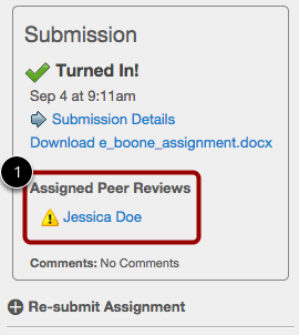 View from the Individual Assignment Page