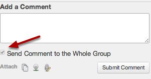 Group Feedback