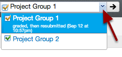 Evaluate Group Assignments
