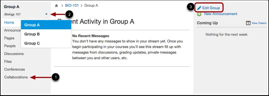 View Student Activity