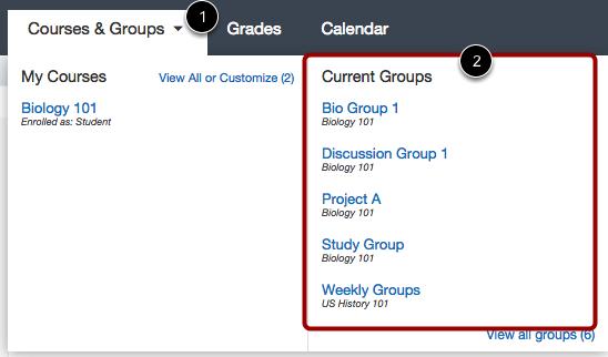 View Group Enrollment