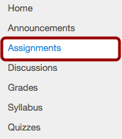 What are Assignments?