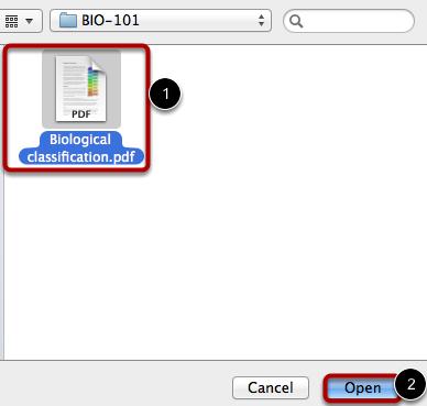 Select PDF File