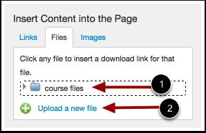 Upload New File