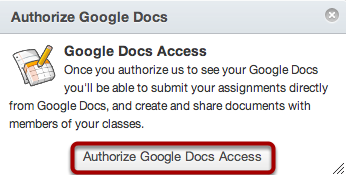 Authorize Google Docs Access