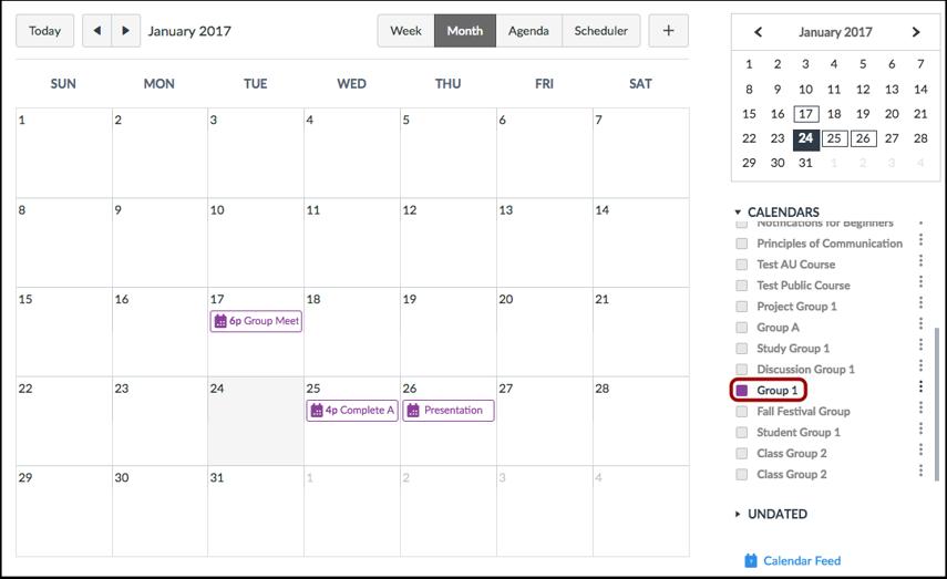 View Group Calendar