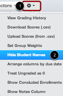 Hide Student Names