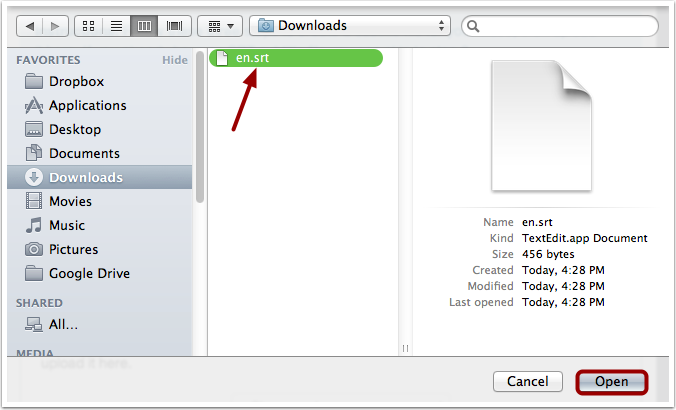 Open Subtitle File
