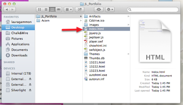 Step 5: View Downloaded Portfolio in Browser (no internet required)