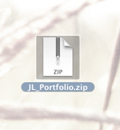 Step 4: Open the Downloaded Portfolio