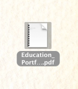 Step 4: Open Downloaded Portfolio as PDF