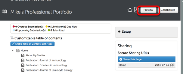 Step 1: Preview your Portfolio