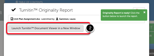 Step 2: Launch Document Viewer