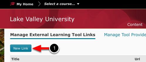Step 1: Create New LTI Link