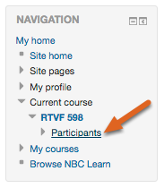 Click on Participants.