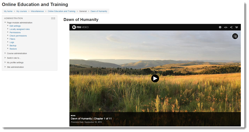The content within the iframe will now display.