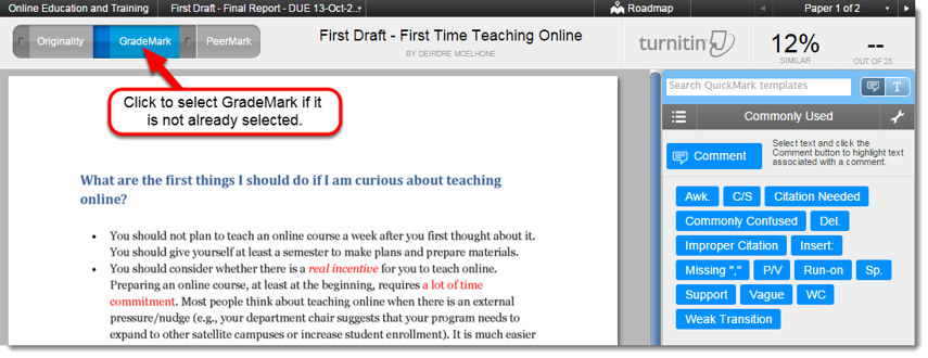 The Document Viewer displays the student's paper on the left and the marking menu on the right.