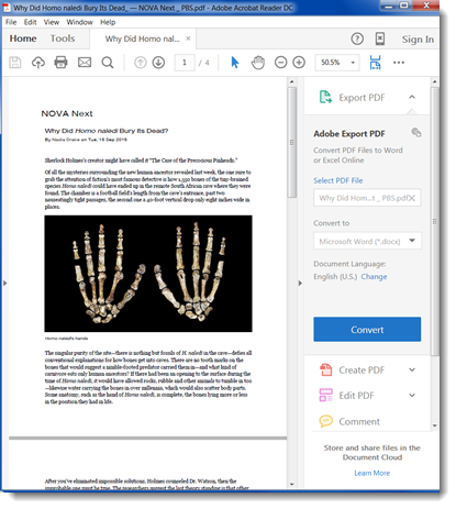 The document now opens in Adobe Reader DC.