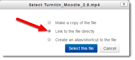 Select Link to the file directly.