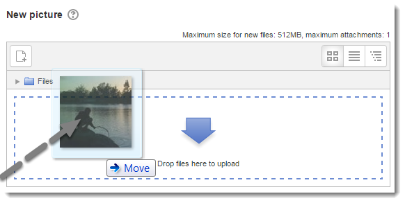 Drag and drop an image file into the Profile picture upload area.