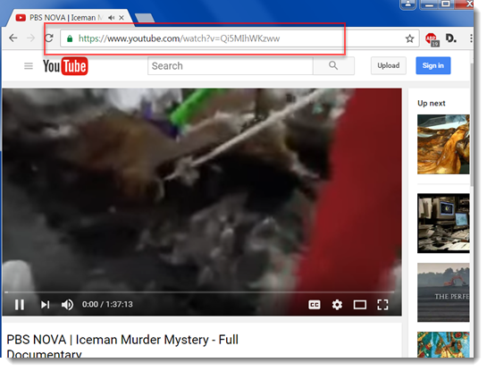 In a new tab, navigate to the desired YouTube video.