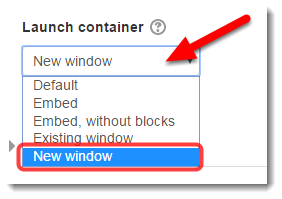 Under Launch container, select New window.