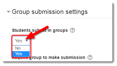 To allow one student to submit for each group, select Yes for Students submit in groups.