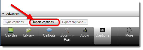 Click on Import captions.