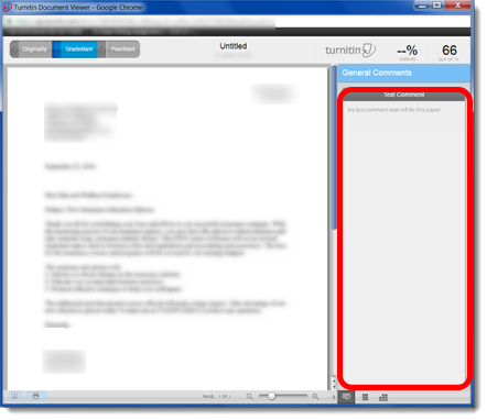 The Turnitin Document Viewer will open in a new window.