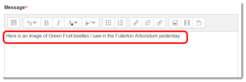 Type text in the Message textbox.