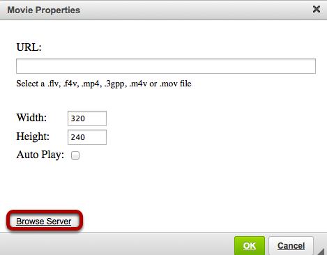 Click Browse Server.